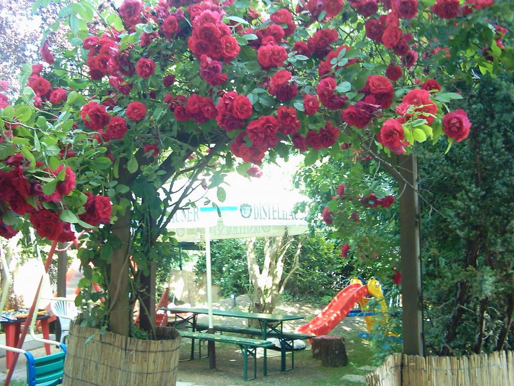 Landgasthaus Taubertal Kinderspielplatz