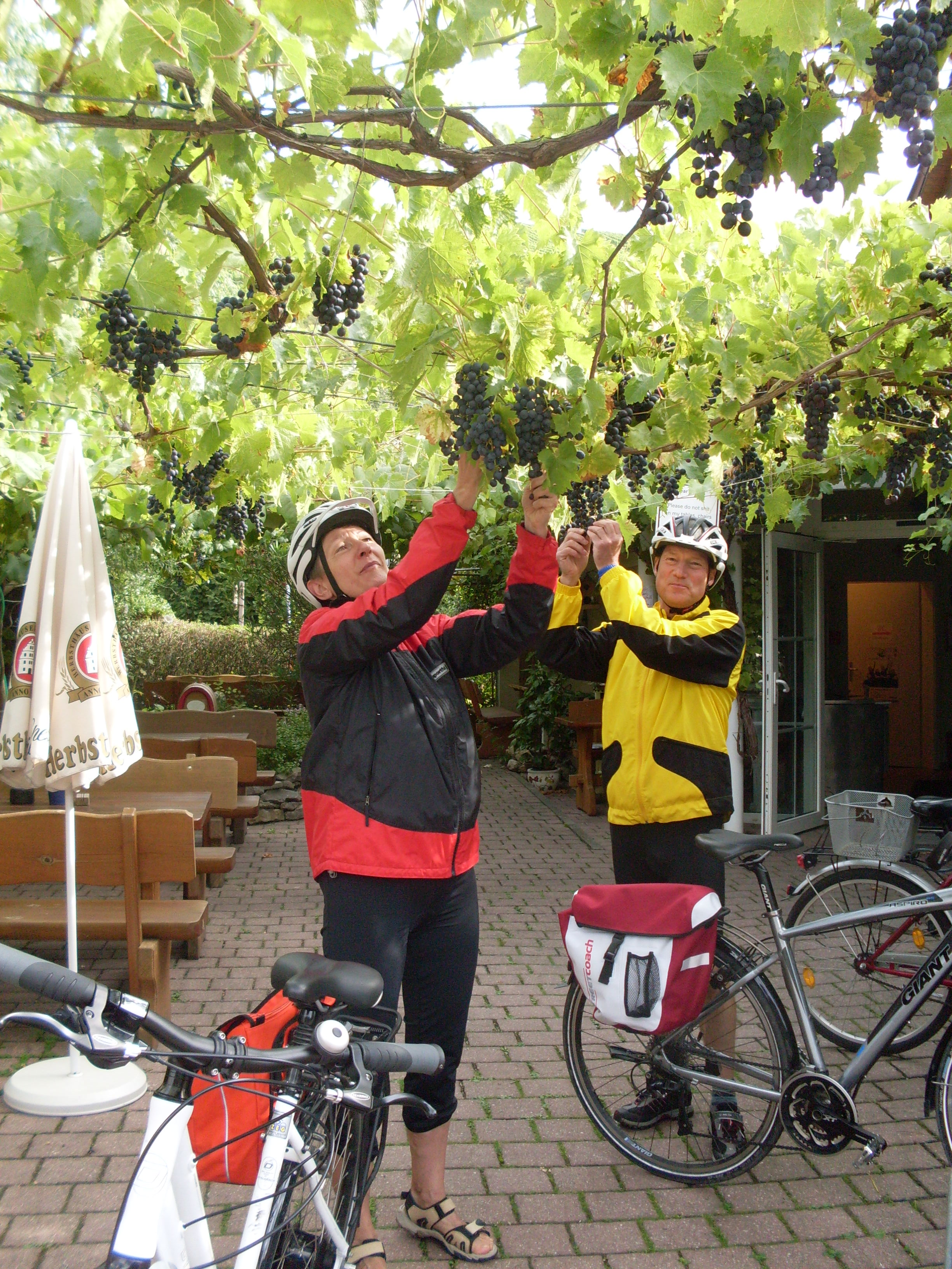 Landgasthof Taubertal Radfahrer